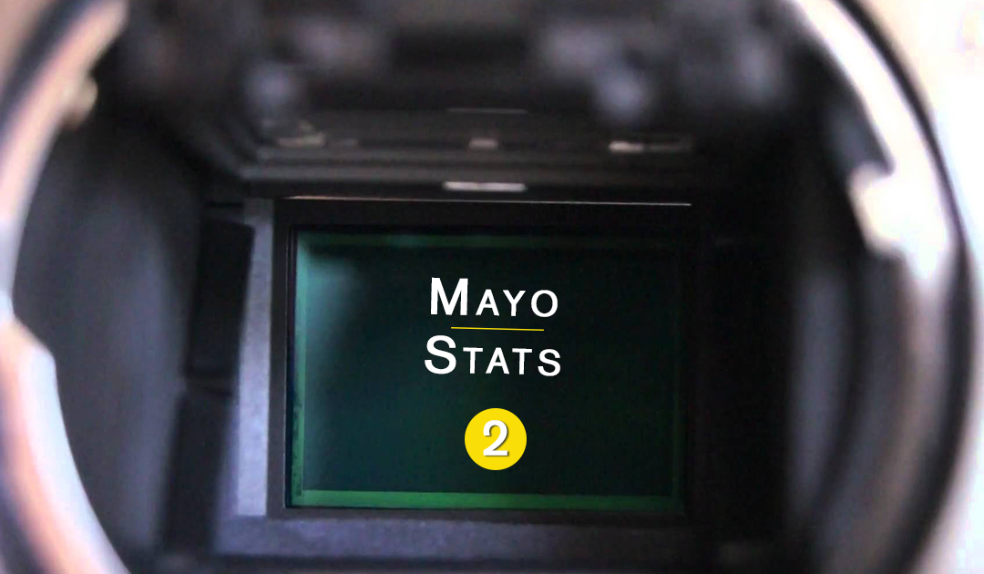 Mayo Stats – Two